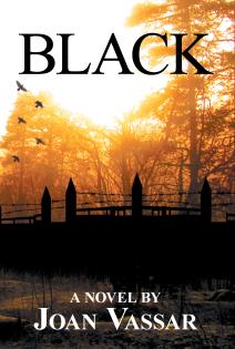 The Black Series (3 Book Series) by Joan Vassar